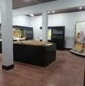 Sala Museográfica Yahuín atiende al público con medidas de prevención